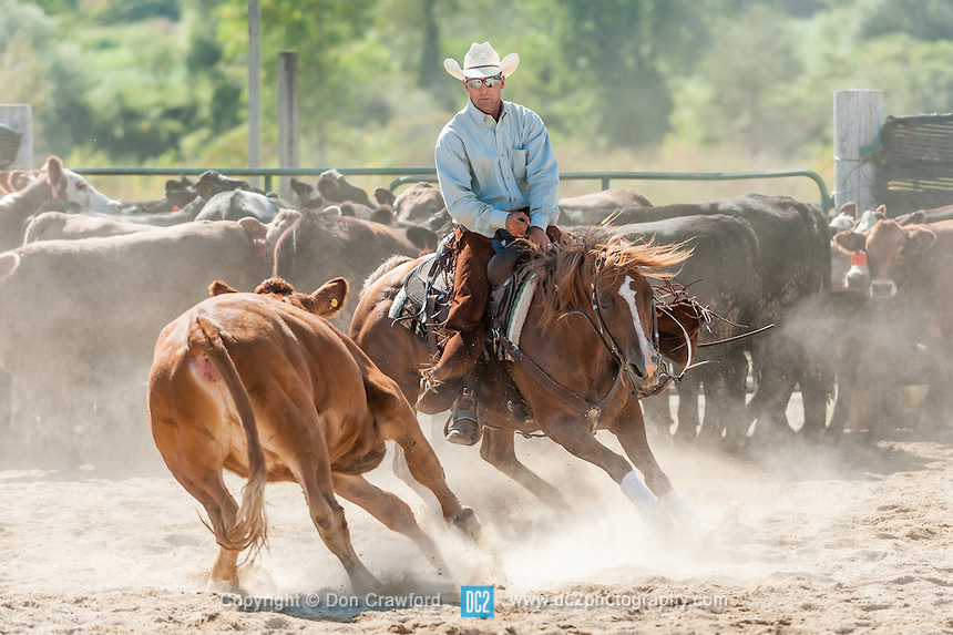 Donaldson Ranch